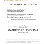 сертификат сам.jpeg